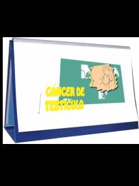 rotafolio cáncer de testículo