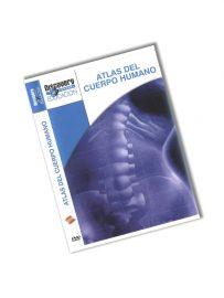 Vídeo Atlas del Cuerpo Humano Glándulas y Hormonas