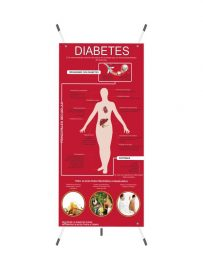 Lamina o Banner Educativo sobre Diabetes