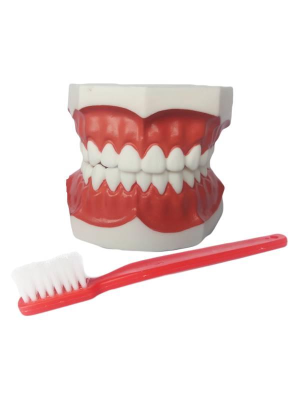 Cepillo de dientes - 5 2